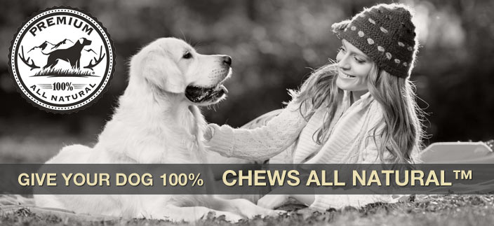 Give your dog 100 percent, and chews all natural! We are dedicated to enhancing the bonds between dogs and dog lovers, and we only sell the best natural pet supplies and antlers for dogs.
